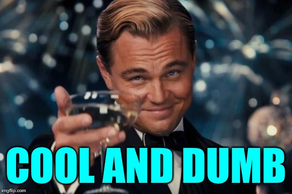 Leonardo Dicaprio Cheers Meme | COOL AND DUMB | image tagged in memes,leonardo dicaprio cheers | made w/ Imgflip meme maker