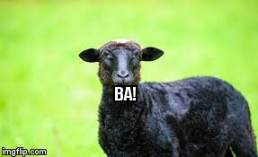BA! | image tagged in black sheep | made w/ Imgflip meme maker