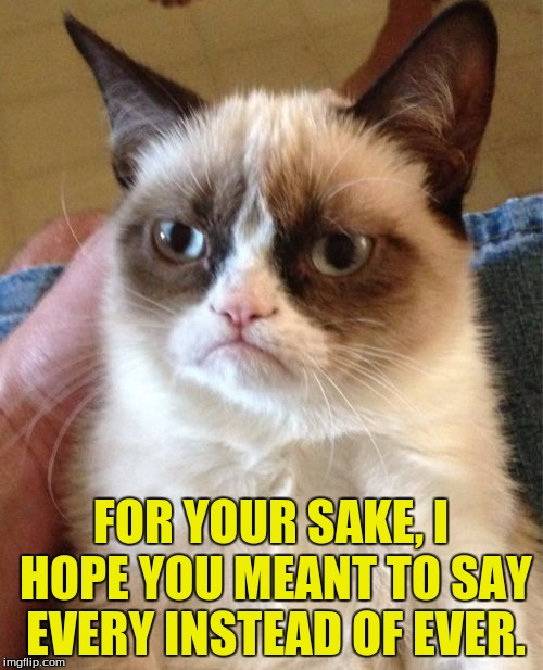 Grumpy Cat Meme | FOR YOUR SAKE, I HOPE YOU MEANT TO SAY EVERY INSTEAD OF EVER. | image tagged in memes,grumpy cat | made w/ Imgflip meme maker
