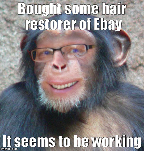Monkey | Bought some hair restorer of Ebay It seems to be working | image tagged in funny | made w/ Imgflip meme maker