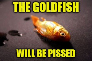 THE GOLDFISH WILL BE PISSED | made w/ Imgflip meme maker