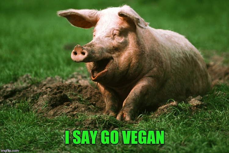 I SAY GO VEGAN | made w/ Imgflip meme maker