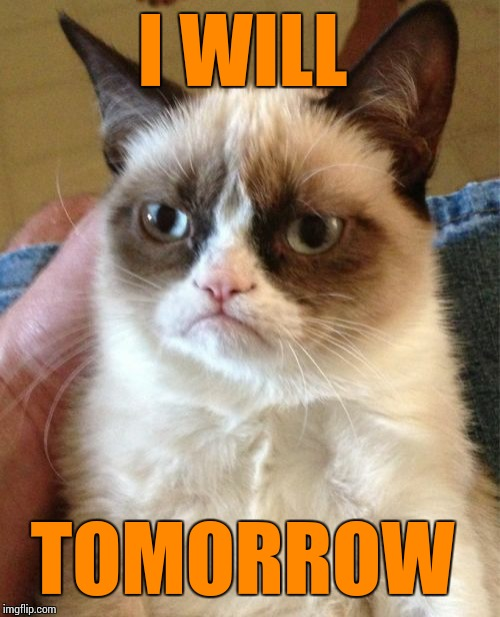 Grumpy Cat Meme | I WILL TOMORROW | image tagged in memes,grumpy cat | made w/ Imgflip meme maker