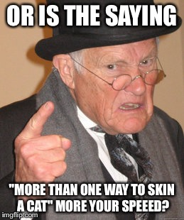 "Back In My Day Meme | OR IS THE SAYING ""MORE THAN ONE WAY TO SKIN A CAT"" MORE YOUR SPEEED? 