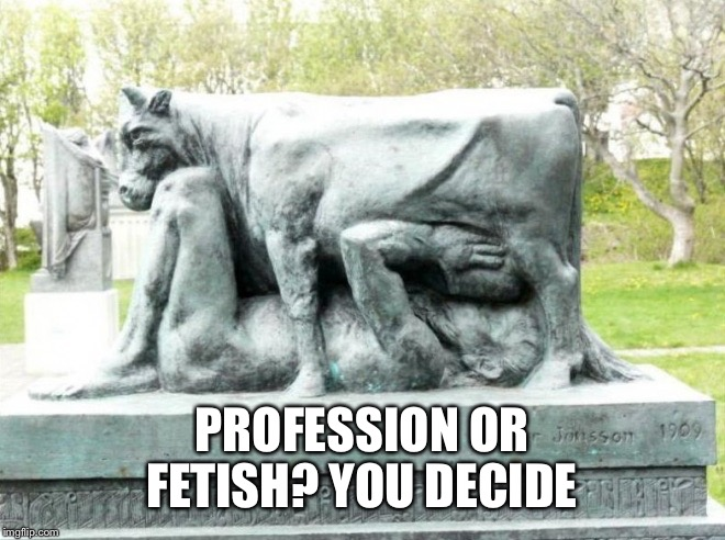 PROFESSION OR FETISH? YOU DECIDE | made w/ Imgflip meme maker