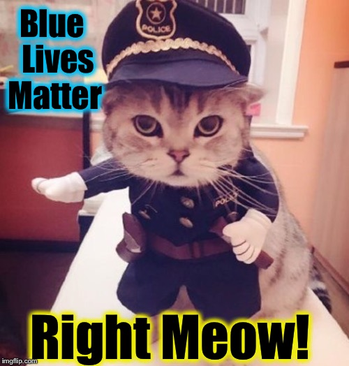 Keep their litterbox clean and they'll keep you safe! |  Blue  Lives Matter; Right Meow! | image tagged in blue lives matter,evilmandoevil,memes,funny cats,meow | made w/ Imgflip meme maker