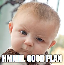 Skeptical Baby Meme | HMMM. GOOD PLAN | image tagged in memes,skeptical baby | made w/ Imgflip meme maker