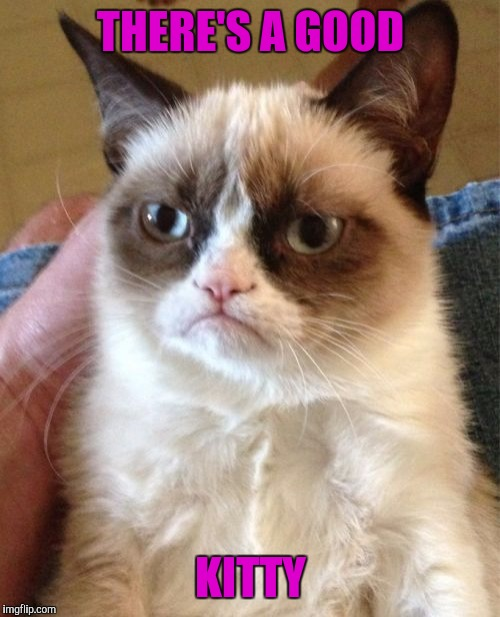 Grumpy Cat Meme | THERE'S A GOOD KITTY | image tagged in memes,grumpy cat | made w/ Imgflip meme maker
