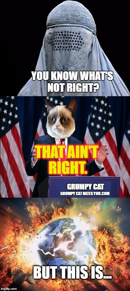 What's Not Right With Politics | YOU KNOW WHAT'S NOT RIGHT? THAT AIN'T RIGHT. GRUMPY CAT GRUMPY CAT HATES YOU.COM BUT THIS IS... | image tagged in politics,memes,funny,grumpy cat,dumb,election 2016 | made w/ Imgflip meme maker