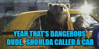YEAH THAT'S DANGEROUS DUDE.  SHOULDA CALLED A CAB | made w/ Imgflip meme maker