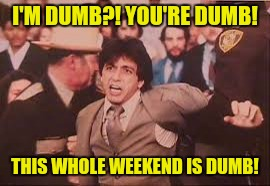 I'M DUMB?! YOU'RE DUMB! THIS WHOLE WEEKEND IS DUMB! | made w/ Imgflip meme maker