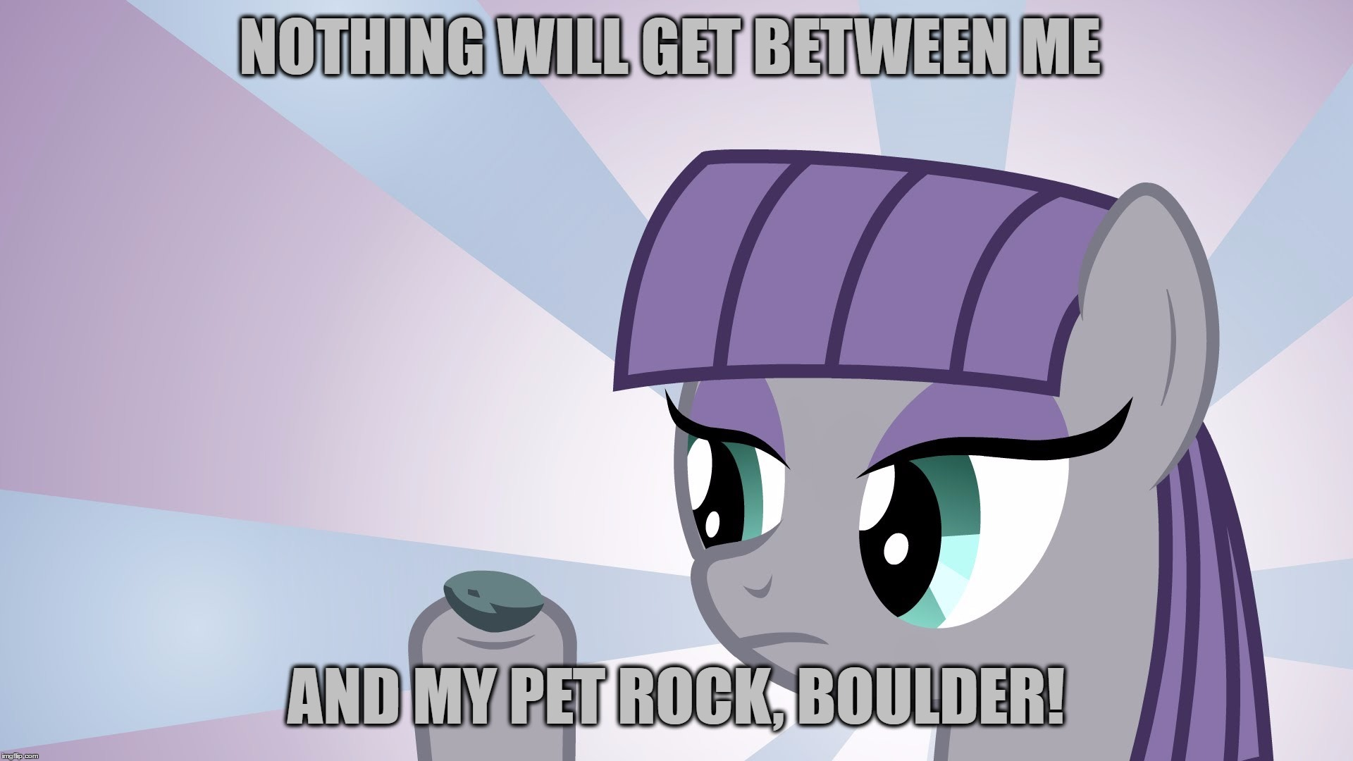 NOTHING WILL GET BETWEEN ME AND MY PET ROCK, BOULDER! | made w/ Imgflip meme maker