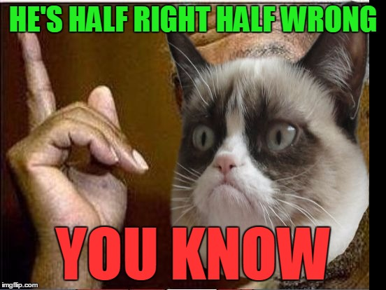 Grumpy Cat He's Right You Know | HE'S HALF RIGHT HALF WRONG YOU KNOW | image tagged in grumpy cat he's right you know | made w/ Imgflip meme maker