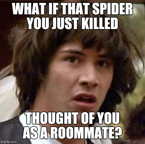 Conspiracy Keanu Meme | WHAT IF THAT SPIDER YOU JUST KILLED THOUGHT OF YOU AS A ROOMMATE? | image tagged in memes,conspiracy keanu | made w/ Imgflip meme maker