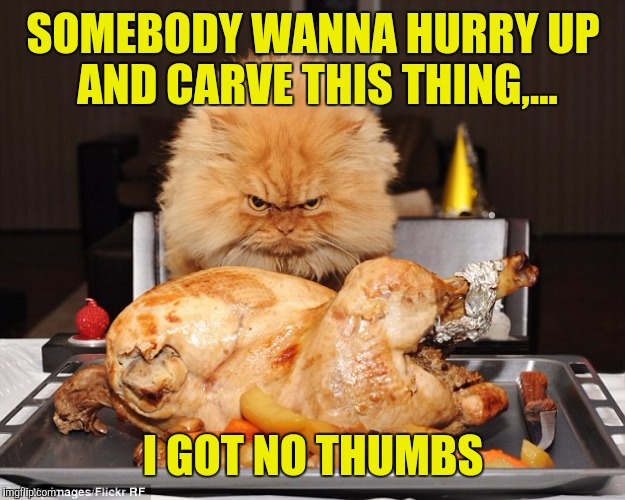 SOMEBODY WANNA HURRY UP AND CARVE THIS THING,... I GOT NO THUMBS | made w/ Imgflip meme maker