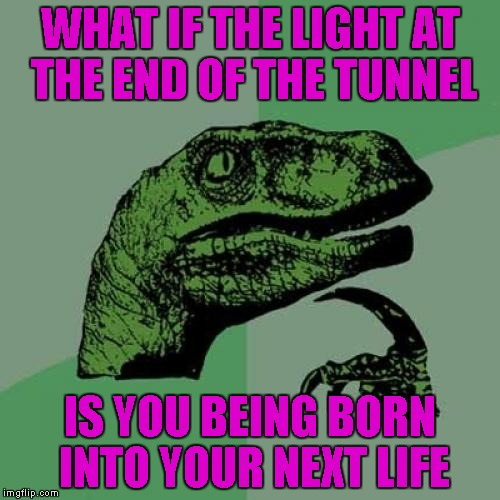 Do you believe in reincarnation? | WHAT IF THE LIGHT AT THE END OF THE TUNNEL IS YOU BEING BORN INTO YOUR NEXT LIFE | image tagged in memes,philosoraptor | made w/ Imgflip meme maker