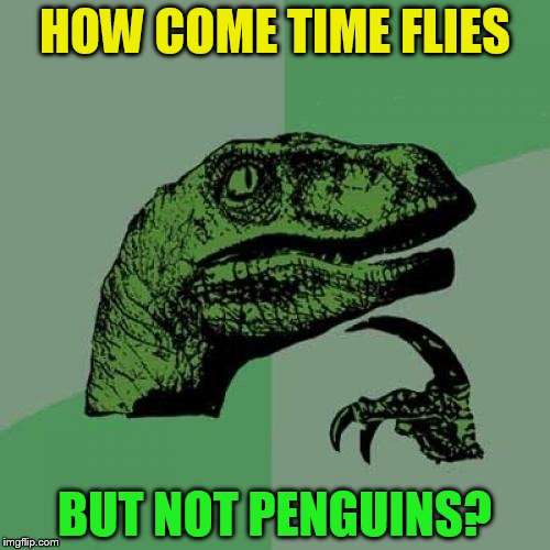 Philosoraptor | HOW COME TIME FLIES BUT NOT PENGUINS? | image tagged in memes,philosoraptor,penguins,time flies,funny meme,laughs | made w/ Imgflip meme maker
