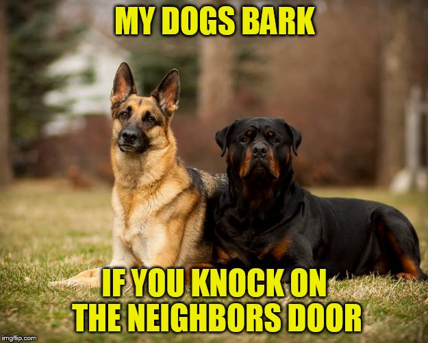 MY DOGS BARK IF YOU KNOCK ON THE NEIGHBORS DOOR | made w/ Imgflip meme maker
