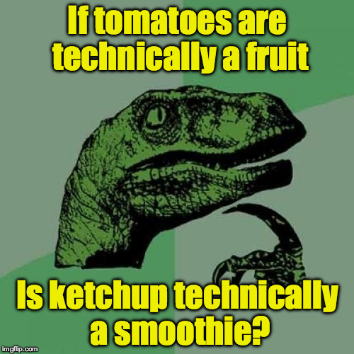 Philosoraptor Meme | If tomatoes are technically a fruit Is ketchup technically a smoothie? | image tagged in memes,philosoraptor | made w/ Imgflip meme maker