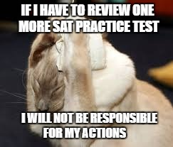Stressed Cat | IF I HAVE TO REVIEW ONE MORE SAT PRACTICE TEST I WILL NOT BE RESPONSIBLE FOR MY ACTIONS | image tagged in cat,stressed,sat | made w/ Imgflip meme maker