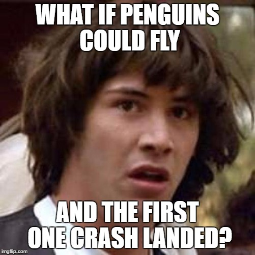 Conspiracy Keanu Meme | WHAT IF PENGUINS COULD FLY AND THE FIRST ONE CRASH LANDED? | image tagged in memes,conspiracy keanu | made w/ Imgflip meme maker