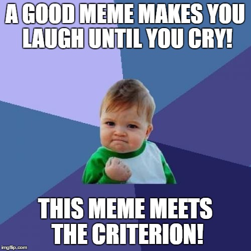 Success Kid Meme | A GOOD MEME MAKES YOU LAUGH UNTIL YOU CRY! THIS MEME MEETS THE CRITERION! | image tagged in memes,success kid | made w/ Imgflip meme maker