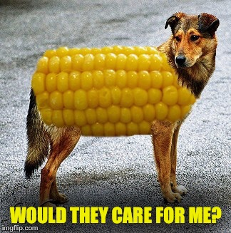 WOULD THEY CARE FOR ME? | made w/ Imgflip meme maker