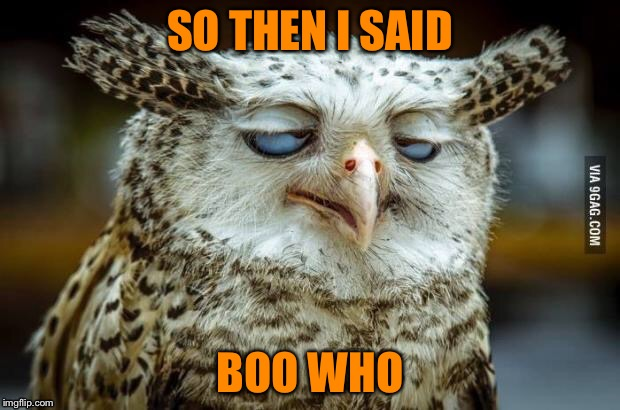 SO THEN I SAID BOO WHO | made w/ Imgflip meme maker