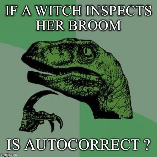 Fliporaptor answer | IF A WITCH INSPECTS HER BROOM IS AUTOCORRECT ? | image tagged in fliporaptor answer | made w/ Imgflip meme maker