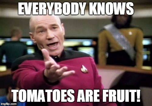Picard Wtf Meme | EVERYBODY KNOWS TOMATOES ARE FRUIT! | image tagged in memes,picard wtf | made w/ Imgflip meme maker