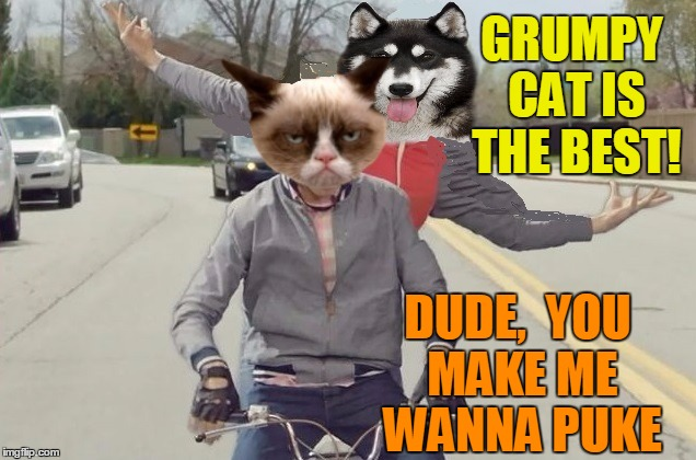 Awww,  poor doggy | GRUMPY CAT IS THE BEST! DUDE,  YOU MAKE ME WANNA PUKE | image tagged in grumpy | made w/ Imgflip meme maker