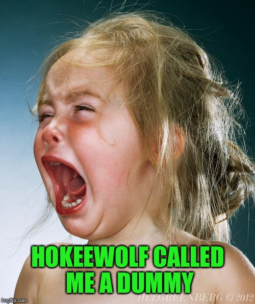 HOKEEWOLF CALLED ME A DUMMY | made w/ Imgflip meme maker