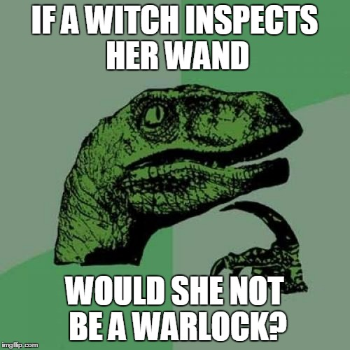 Philosoraptor Meme | IF A WITCH INSPECTS HER WAND WOULD SHE NOT BE A WARLOCK? | image tagged in memes,philosoraptor | made w/ Imgflip meme maker