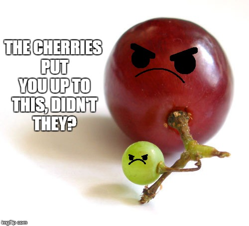 THE CHERRIES PUT YOU UP TO THIS, DIDN'T THEY? | made w/ Imgflip meme maker