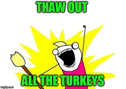 X All The Y Meme | THAW OUT ALL THE TURKEYS | image tagged in memes,x all the y | made w/ Imgflip meme maker