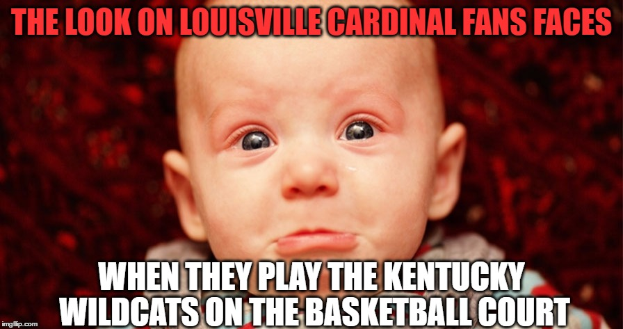 Louisville vs Kentucky |  THE LOOK ON LOUISVILLE CARDINAL FANS FACES; WHEN THEY PLAY THE KENTUCKY WILDCATS ON THE BASKETBALL COURT | image tagged in louisville,cardinals,kentucky,wildcats,l1c4,bbn | made w/ Imgflip meme maker