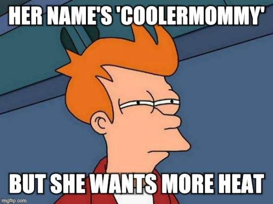 Futurama Fry Meme | HER NAME'S 'COOLERMOMMY' BUT SHE WANTS MORE HEAT | image tagged in memes,futurama fry | made w/ Imgflip meme maker