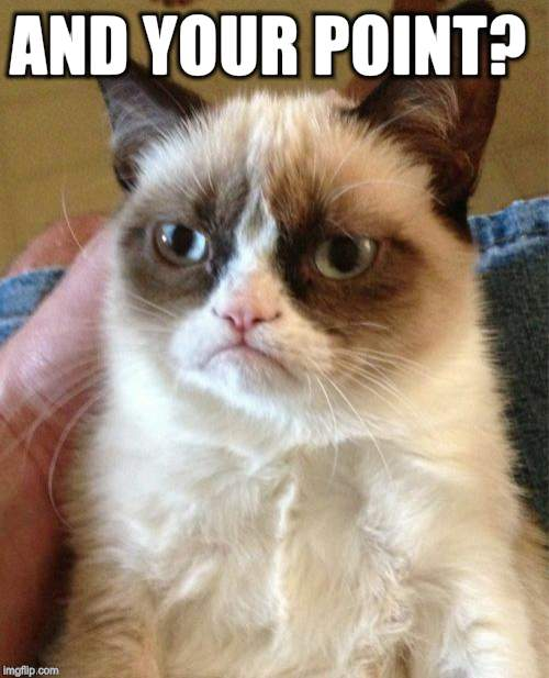 Grumpy Cat Meme | AND YOUR POINT? | image tagged in memes,grumpy cat | made w/ Imgflip meme maker
