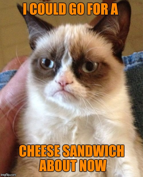 Grumpy Cat Meme | I COULD GO FOR A CHEESE SANDWICH ABOUT NOW | image tagged in memes,grumpy cat | made w/ Imgflip meme maker