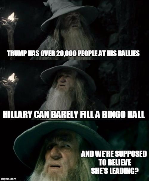Confused Gandalf Meme | TRUMP HAS OVER 20,000 PEOPLE AT HIS RALLIES HILLARY CAN BARELY FILL A BINGO HALL AND WE'RE SUPPOSED TO BELIEVE SHE'S LEADING? | image tagged in memes,confused gandalf | made w/ Imgflip meme maker