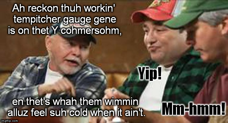 Let's see how many feminists I can trigger... | Ah reckon thuh workin' tempitcher gauge gene is on thet Y cohmersohm, en thet's whah them wimmin alluz feel suh cold when it ain't. | image tagged in redneck wisdom,memes,feminist,triggered | made w/ Imgflip meme maker