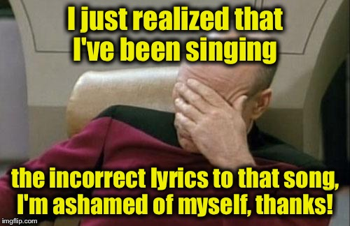 Captain Picard Facepalm Meme | I just realized that I've been singing the incorrect lyrics to that song, I'm ashamed of myself, thanks! | image tagged in memes,captain picard facepalm | made w/ Imgflip meme maker