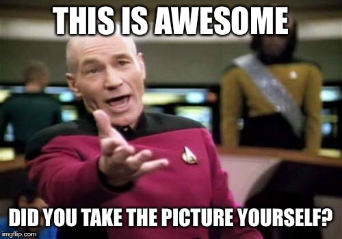 Picard Wtf Meme | THIS IS AWESOME DID YOU TAKE THE PICTURE YOURSELF? | image tagged in memes,picard wtf | made w/ Imgflip meme maker