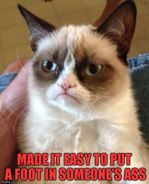 Grumpy Cat Meme | MADE IT EASY TO PUT A FOOT IN SOMEONE'S ASS | image tagged in memes,grumpy cat | made w/ Imgflip meme maker