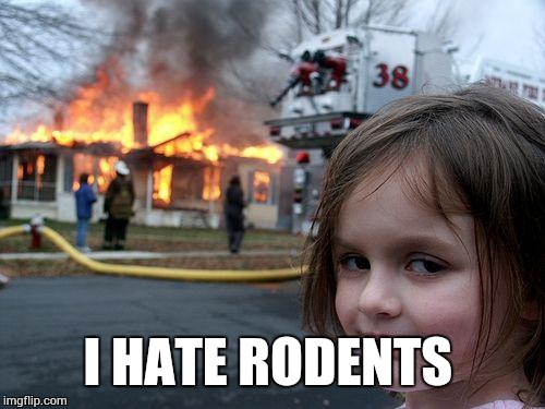 Disaster Girl Meme | I HATE RODENTS | image tagged in memes,disaster girl | made w/ Imgflip meme maker