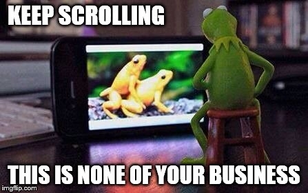 Keeping with the program | KEEP SCROLLING THIS IS NONE OF YOUR BUSINESS | image tagged in kermit the frog | made w/ Imgflip meme maker