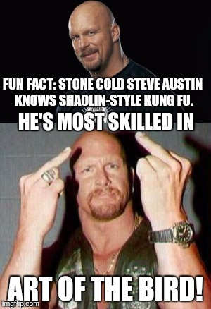 FUN FACT: STONE COLD STEVE AUSTIN KNOWS SHAOLIN-STYLE KUNG FU. ART OF THE BIRD! HE'S MOST SKILLED IN | image tagged in stone cold,steve austin,fun fact,memes | made w/ Imgflip meme maker