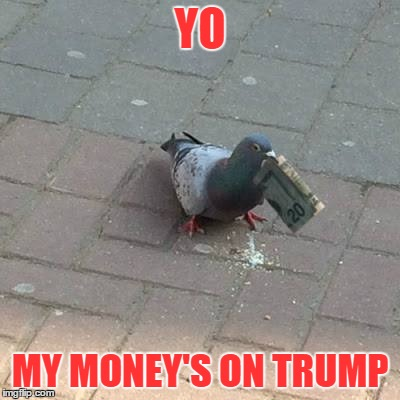 yo | YO MY MONEY'S ON TRUMP | image tagged in donald trump | made w/ Imgflip meme maker