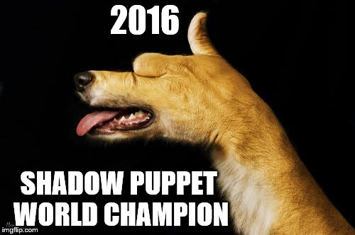 This guy is goooood!!! | 2016 SHADOW PUPPET WORLD CHAMPION | image tagged in memes,shadow puppet,dog | made w/ Imgflip meme maker