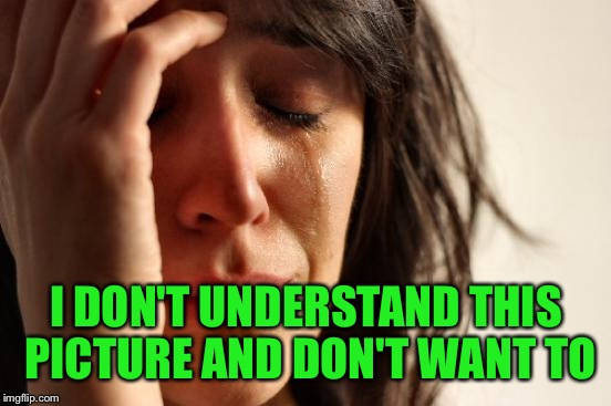 First World Problems Meme | I DON'T UNDERSTAND THIS PICTURE AND DON'T WANT TO | image tagged in memes,first world problems | made w/ Imgflip meme maker